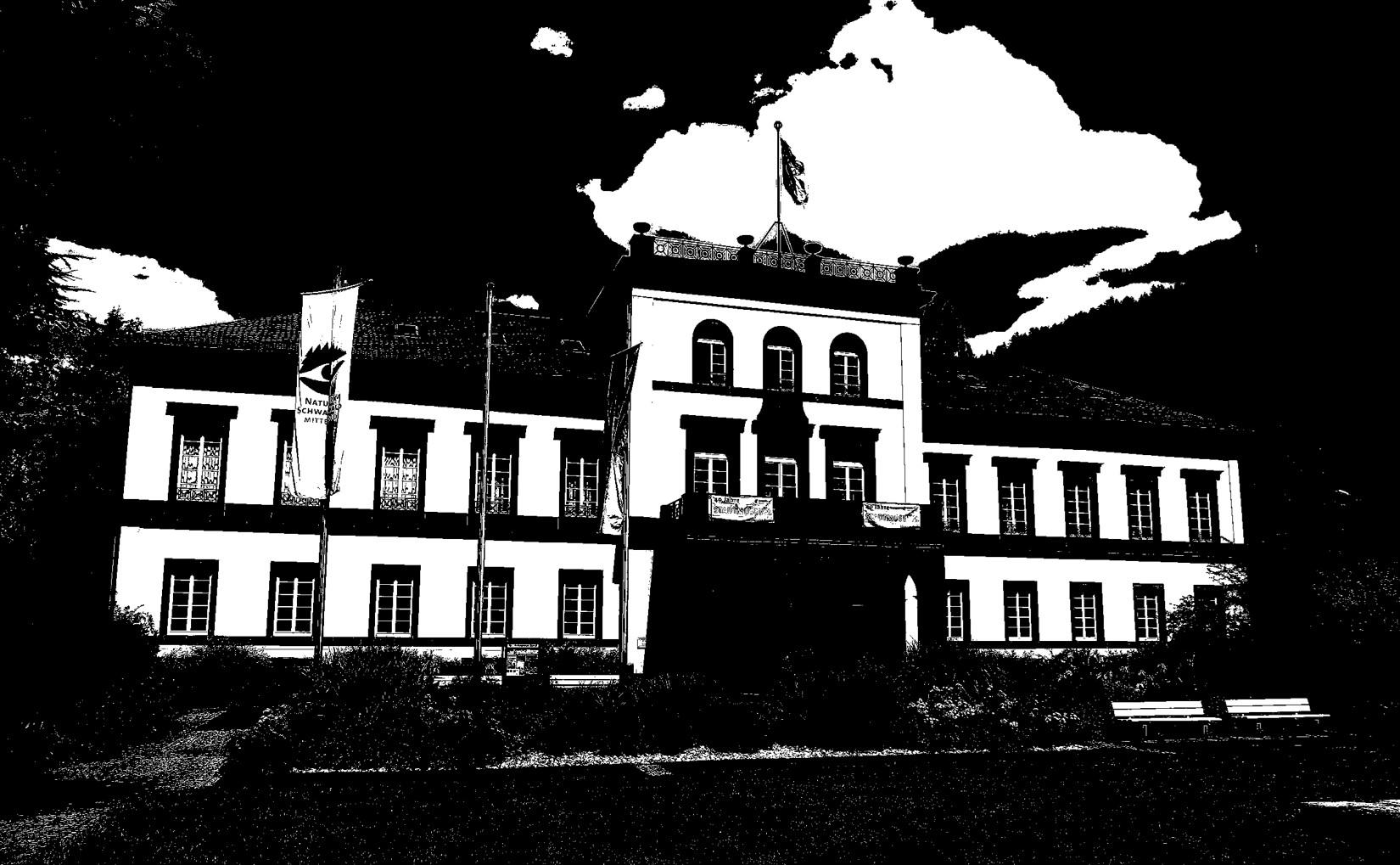 Bild Schloss in Schwarz Weiß
